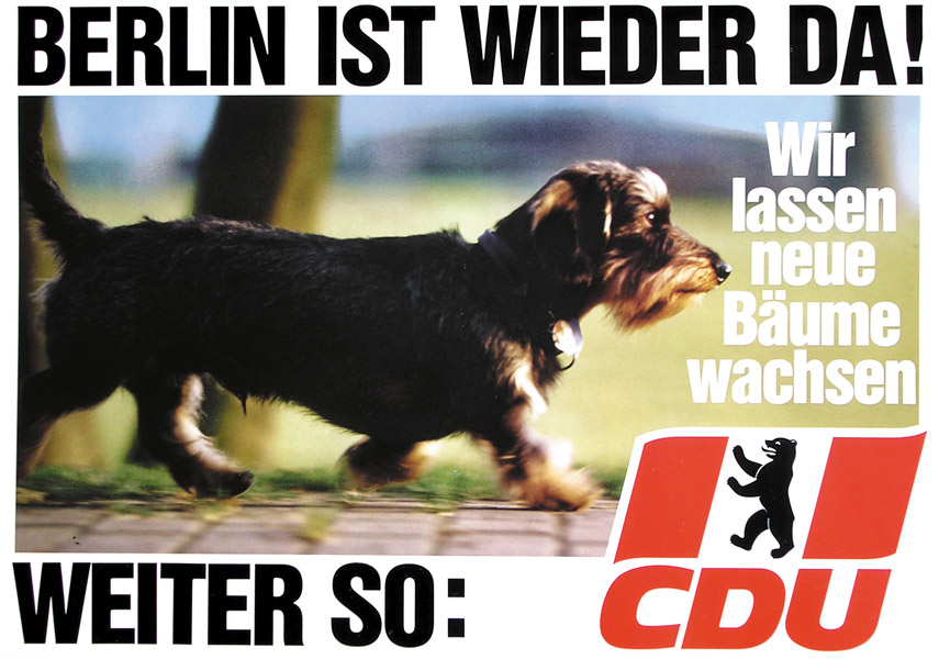 Berlin-Hund-quer